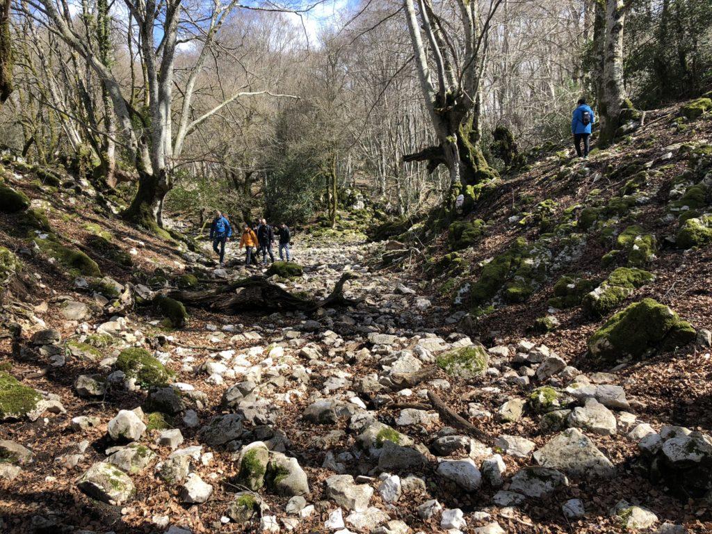 Escursionismo / Nordic 4
