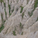 Escursione alla Riserva dei Calanchi di Atri 7