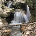 Escursione alle sorgenti di Capofiume 6