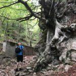 Escursione alle sorgenti di Capofiume 7